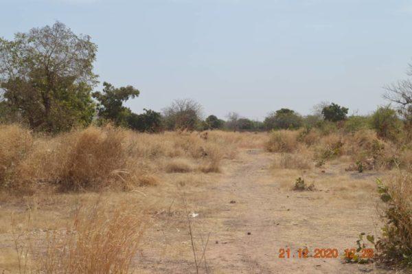 Songdin, Burkina Faso
